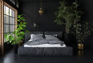Kingsize seng i mørkt rom med inneplanter