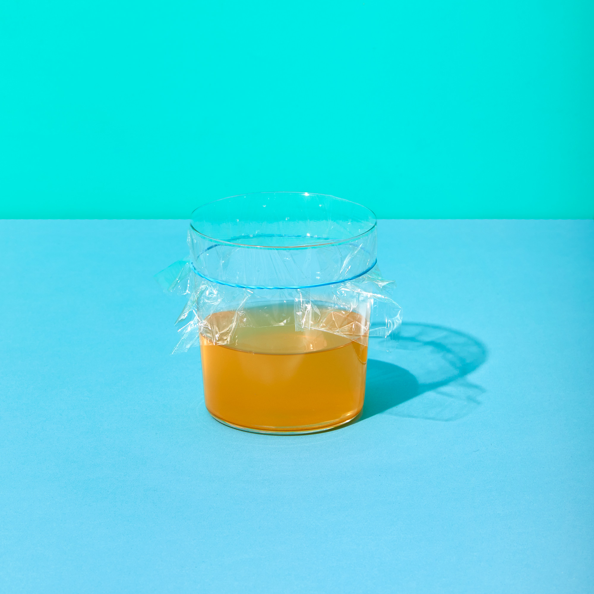 Felle for bananfluer med eddik og plastfolie
